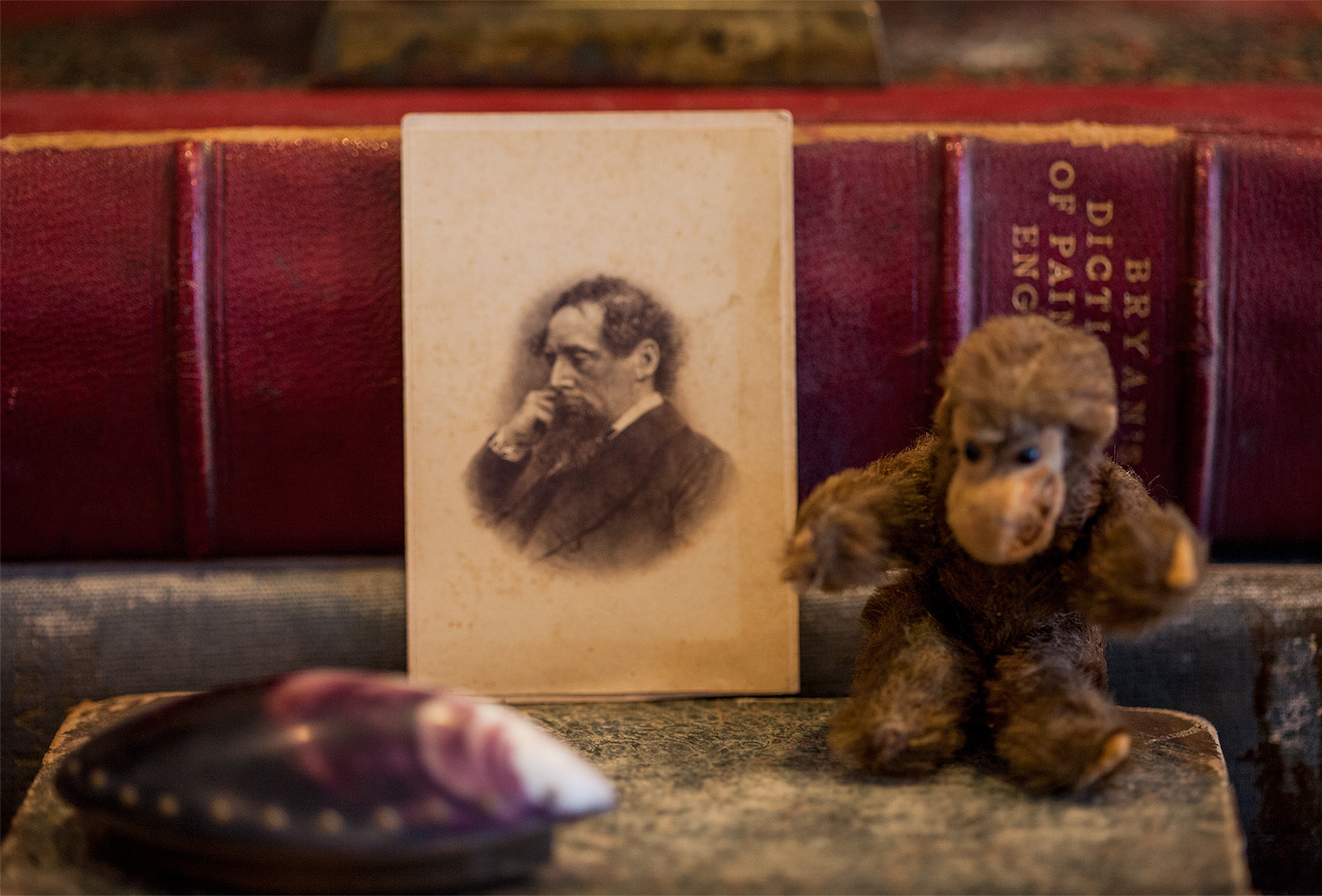 How To Build Antique Collections: Darwin